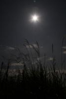 full_moon_2.jpg